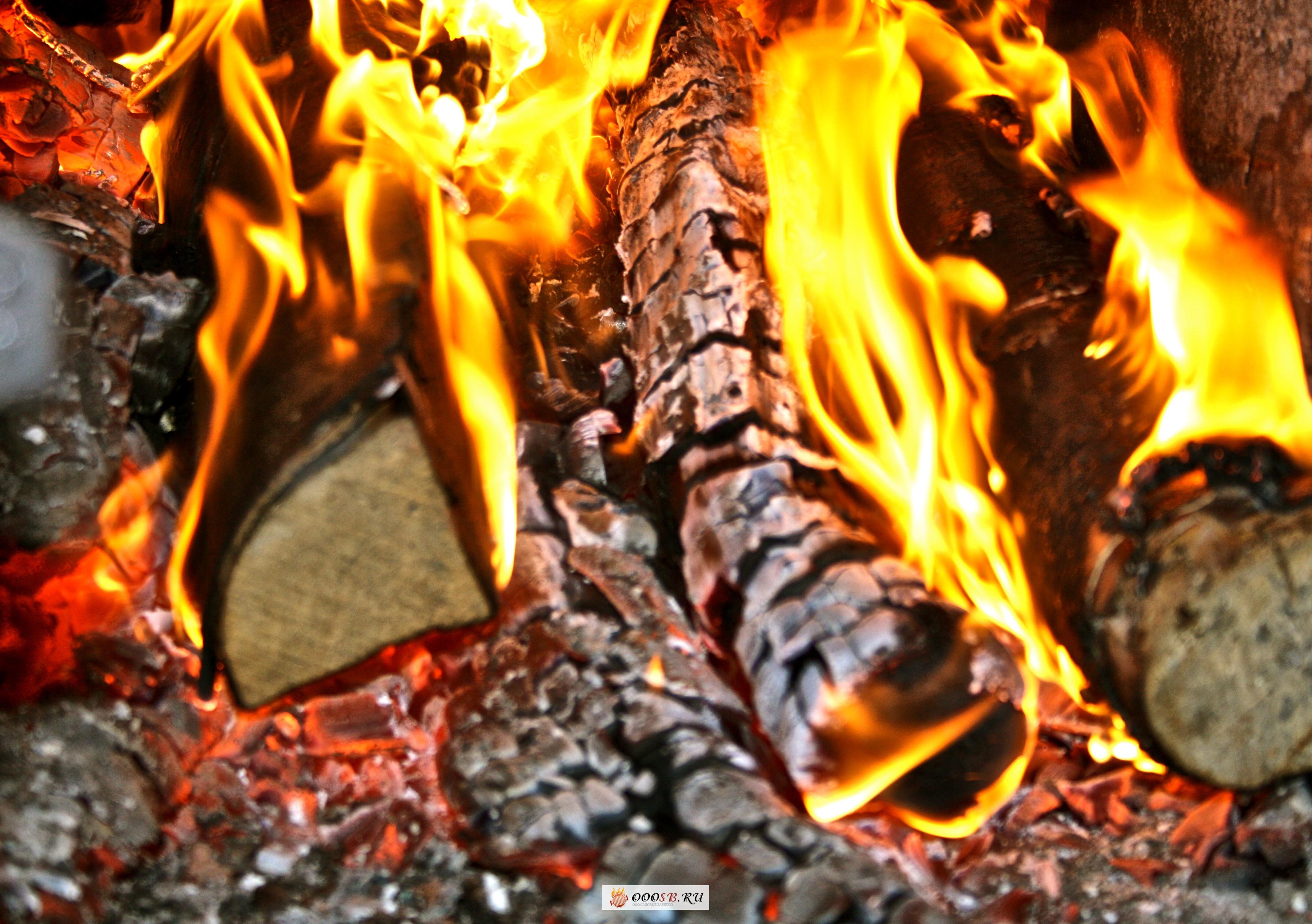Барбекю на дровах: готовьте блюда с неповторимым вкусом в дровяной печи!