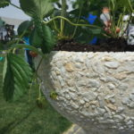 мраморная крошка для вазона для цветов